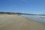 sand, wind, surf